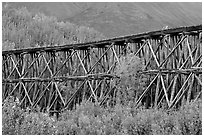 Section of Gilahina trestle constructed in 1911. Wrangell-St Elias National Park ( black and white)