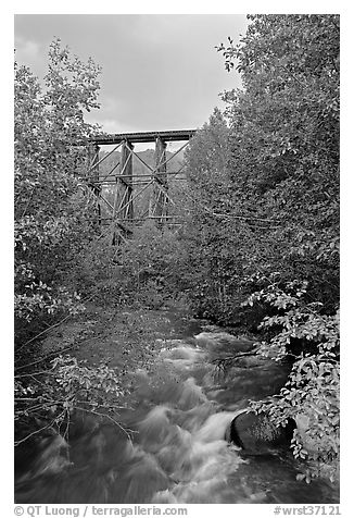 Gilahina River and trestle. Wrangell-St Elias National Park (black and white)