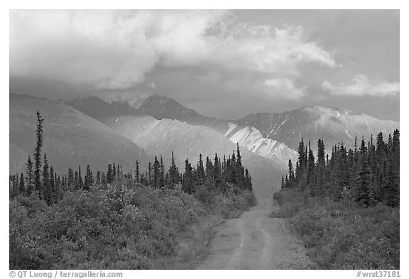 Gravel road leading to mountains lit by sunset light. Wrangell-St Elias National Park (black and white)
