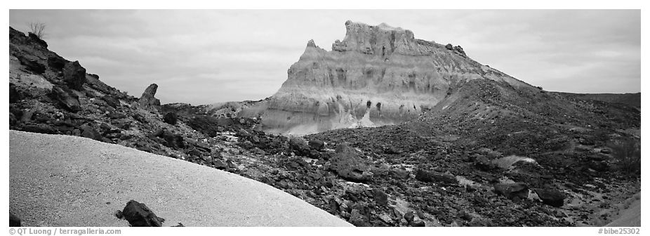 Landscape of white volcanic ash and rocks. Big Bend National Park (black and white)