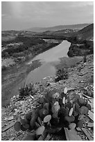 Rio Grande Wild and Scenic River, dusk. Big Bend National Park ( black and white)