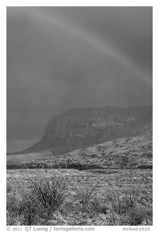 Rainbow over desert and Chisos Mountains. Big Bend National Park (black and white)