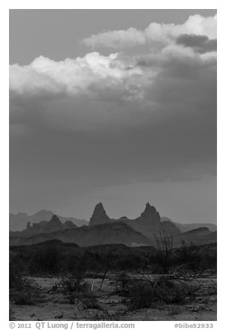 Mules Ears. Big Bend National Park (black and white)