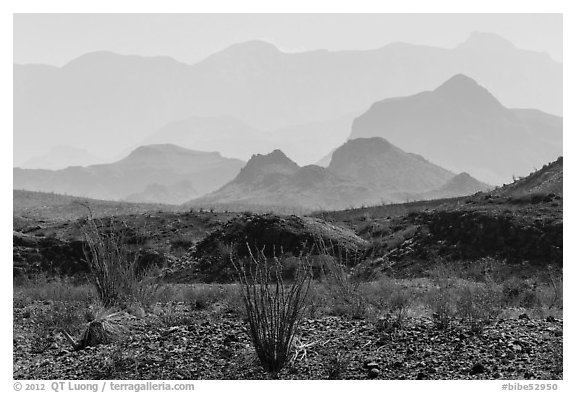 Desert and hazy Chisos Mountains. Big Bend National Park (black and white)
