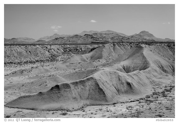 Eroded canyon near Maverick Junction. Big Bend National Park (black and white)