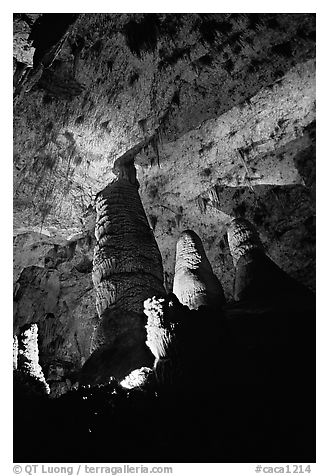 Hall of Giants with six stories tall formations. Carlsbad Caverns National Park (black and white)