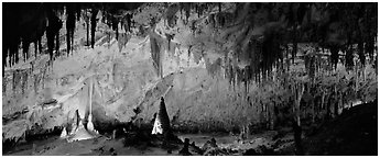 Delicate cave formations in Papoose Room. Carlsbad Caverns National Park (Panoramic black and white)