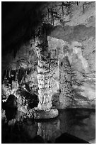 Column in Devils Spring. Carlsbad Caverns National Park ( black and white)