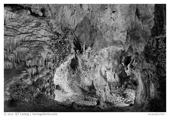 Alcove with delicate speleotherms. Carlsbad Caverns National Park (black and white)