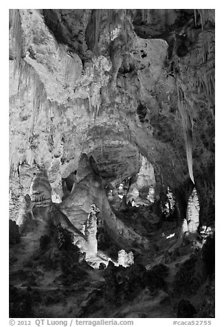 Massive speleotherms. Carlsbad Caverns National Park (black and white)