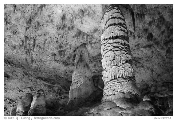 Giant Dome column in Hall of Giants. Carlsbad Caverns National Park (black and white)