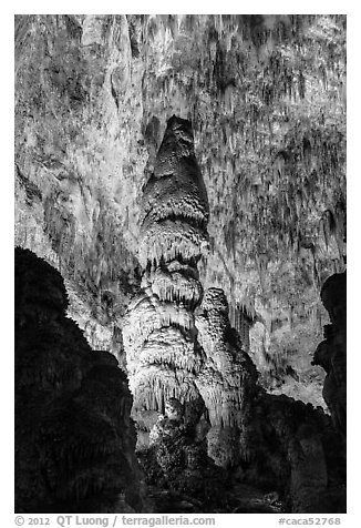 Massive stalagmites and delicate stalagtites, Big Room. Carlsbad Caverns National Park (black and white)