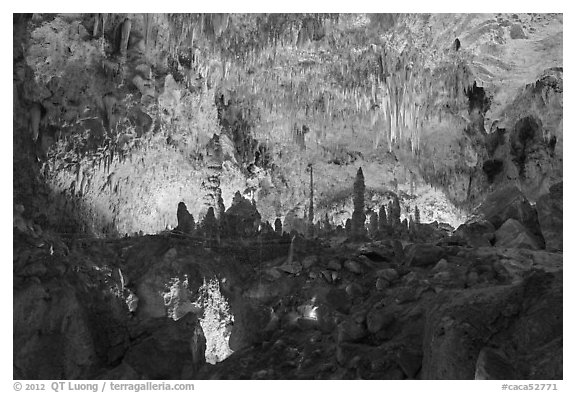 Fairyland, Big Room. Carlsbad Caverns National Park (black and white)