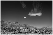 Cloud and blue skies above burned desert. Carlsbad Caverns National Park, New Mexico, USA. (black and white)