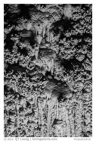Cave popcorn detail. Carlsbad Caverns National Park (black and white)