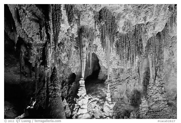 Pinnacles and columns, some shaped like pagoda spires. Carlsbad Caverns National Park (black and white)