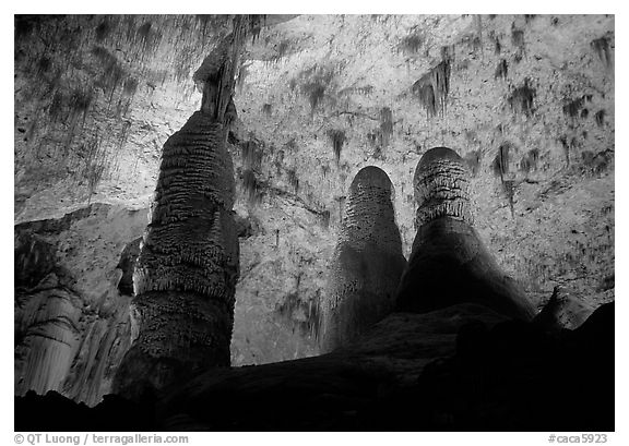 Tall columns in Hall of Giants. Carlsbad Caverns National Park (black and white)