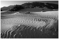 Mesquite Sand Dunes and Tucki mountain, early morning. Death Valley National Park, California, USA. (black and white)