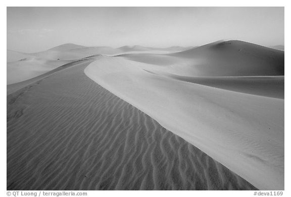 Mesquite Sand Dunes during a sandstorm. Death Valley National Park (black and white)