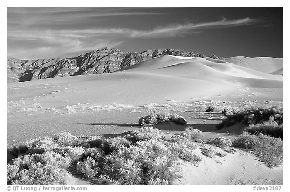 Eureka sand dunes, late afternoon. Death Valley National Park (black and white)