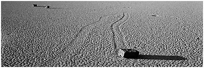 Moving stones on dried mud playa. Death Valley National Park (Panoramic black and white)