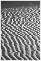 Close-up of Sand ripples, sunrise. Death Valley National Park ( black and white)