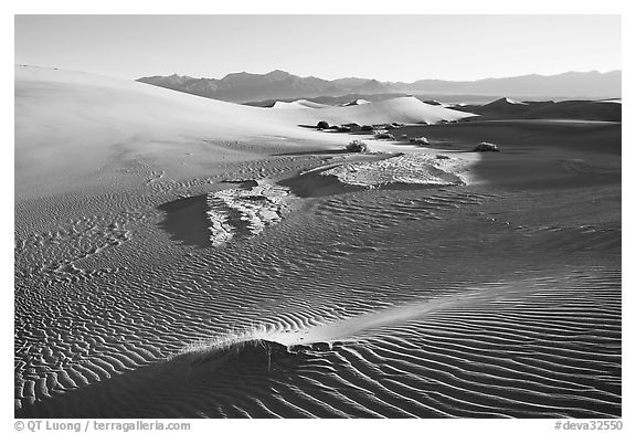 Depression in dunes with sand ripples, Mesquite Sand Dunes, early morning. Death Valley National Park (black and white)