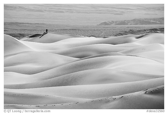 Dune ridges with photographer in the distance, Mesquite Sand Dunes, morning. Death Valley National Park (black and white)
