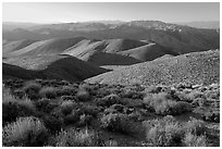 Tucki Mountains from Aguereberry point, late afternoon. Death Valley National Park, California, USA. (black and white)
