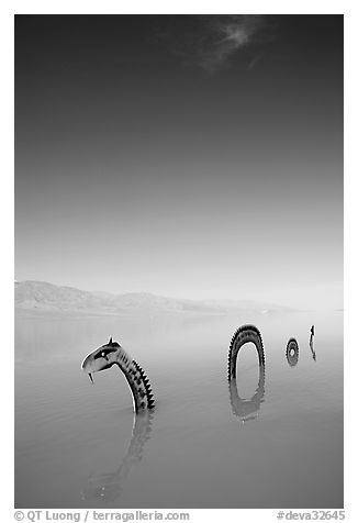 Short lived dragon art installation in rare seasonal lake. Death Valley National Park (black and white)