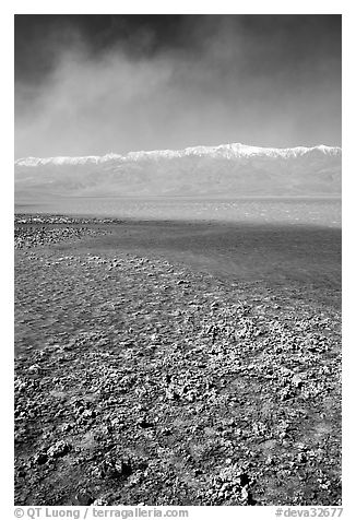 Salt formations on shore of Death Valley Lake, morning. Death Valley National Park (black and white)