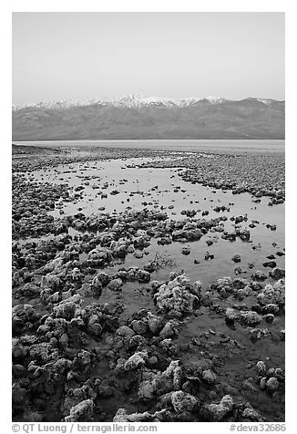 Recently emerged salt pools, Badwater, dawn. Death Valley National Park (black and white)
