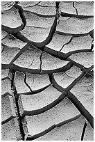 Cracked mud. Death Valley National Park ( black and white)