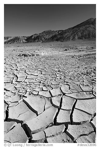 Mud cracks and Funeral mountains. Death Valley National Park (black and white)