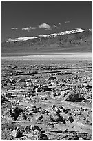 Rock field, salt flats, and Panamint Range, morning. Death Valley National Park ( black and white)