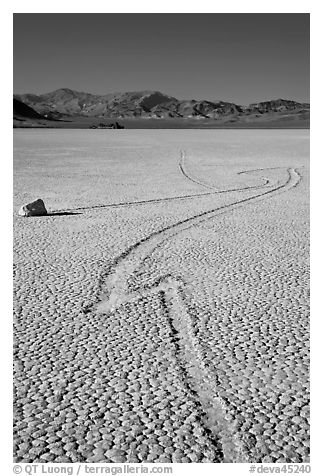 Zig-zagging track and sailing stone, the Racetrack playa. Death Valley National Park (black and white)