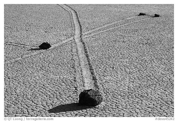 Intersecting travel grooves of sliding stones, the Racetrack. Death Valley National Park (black and white)