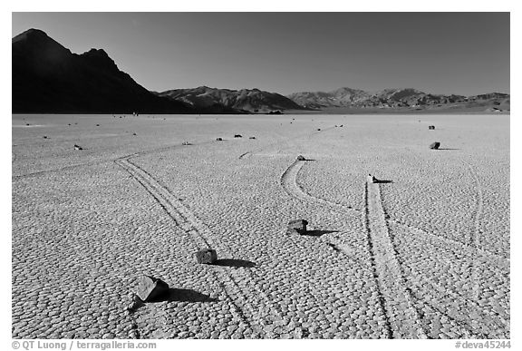 Sailing rocks, the Racetrack playa. Death Valley National Park (black and white)