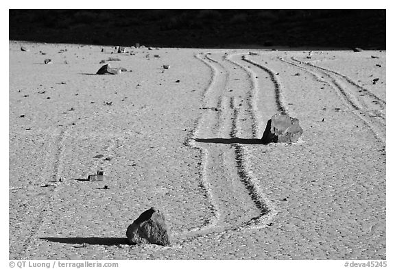 Gliding stones, the Racetrack playa. Death Valley National Park (black and white)