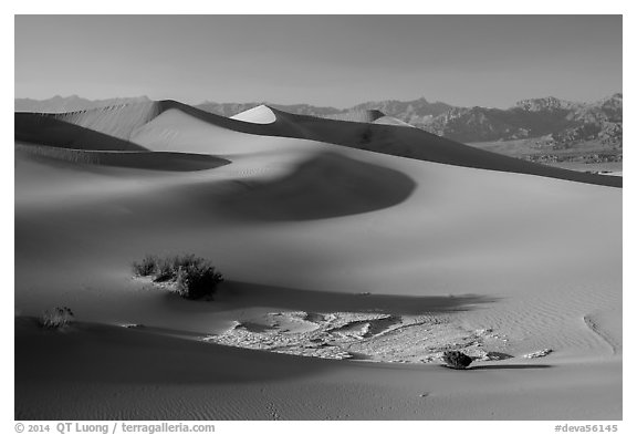 Dunes, mesquite, dried mud, Amargosa Range. Death Valley National Park (black and white)