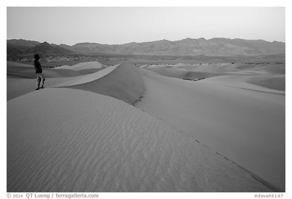 Park visitor looking, Mesquite Sand Dunes. Death Valley National Park (black and white)