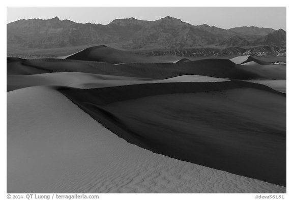 Mesquite Sand dunes and Amargosa Range at dusk. Death Valley National Park (black and white)
