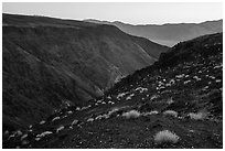 View from Father Crowley Viewpoint at sunrise. Death Valley National Park ( black and white)