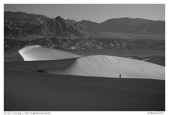 Hiker on ridge, Mesquite Dunes, sunrise. Death Valley National Park (black and white)