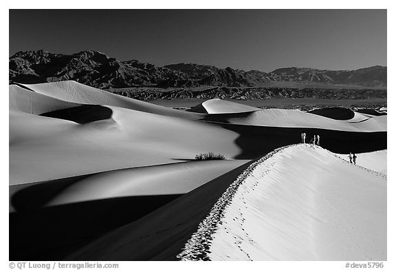 Dune field with hikers, Mesquite Dunes. Death Valley National Park (black and white)
