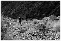 Hikers in a side canyon. Death Valley National Park ( black and white)
