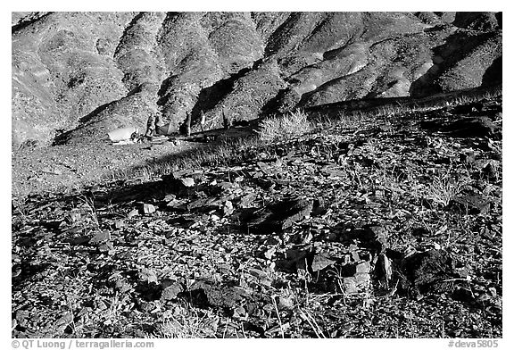 Backcountry camping. Death Valley National Park (black and white)