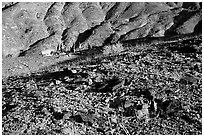 Backcountry camping. Death Valley National Park ( black and white)