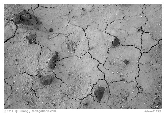 Close-up of volcanic stones and cracked mud, Panamint Valley. Death Valley National Park (black and white)