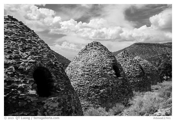 Wildrose Charcoal Kilns and clouds. Death Valley National Park (black and white)